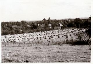 Kamp (nabij Nuth)